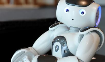 OIC Robot Robautisme credit : Service photo Université de Nantes